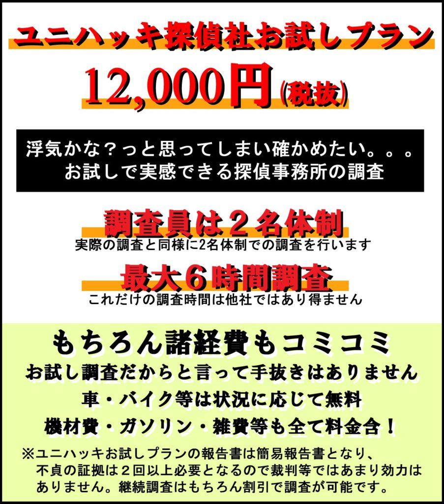 ユニハッキ探偵社お試しプラン12000円